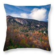 Autumn Summit Throw Pillow
