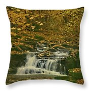 Autumn Surrounded In Color Throw Pillow
