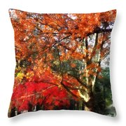 Autumn Sycamore Tree Throw Pillow