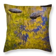 Autumn Tree Reflections With Rocks On The Muskegon River Throw Pillow