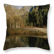 Autumn View Of The Park With Half Dome Throw Pillow