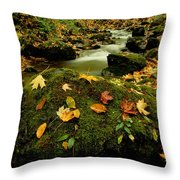 Autumn View Shows Fallen Leaves Throw Pillow