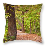 Autumn Walk - Impressions Throw Pillow