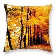 Autumn Walk In Belgium Throw Pillow
