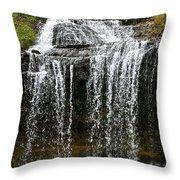 Autumn Water Fall Throw Pillow
