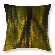 Autumn Water Reflection Abstract I Throw Pillow