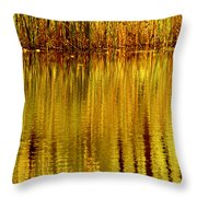 Autumn Water Reflection Abstract II Throw Pillow