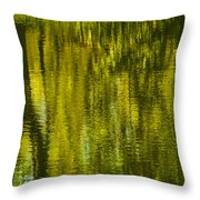 Autumn Water Reflection Abstract IIi Throw Pillow