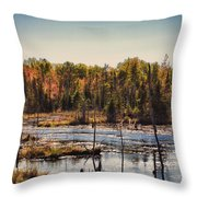 Autumn Wetland Throw Pillow