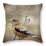 Autumn Wildlife Throw Pillow