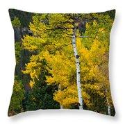 Autumn Wonder Throw Pillow