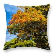 Autumnal Fruition Throw Pillow