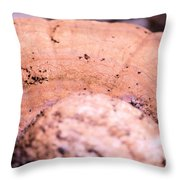 Autumn's Abstract Mushroom Throw Pillow