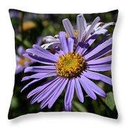 Autumn's Aster Throw Pillow