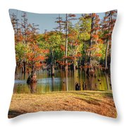 Autumn's Beauty And Reflection Throw Pillow