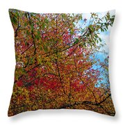 Autumns Beauty Throw Pillow