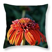 Autumn's Cone Flower Throw Pillow