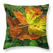 Autumn's Gift Throw Pillow