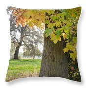 Autumn's Gold Throw Pillow