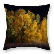 Autumn's Last Hurrah Throw Pillow