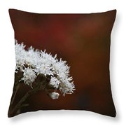 Autumn's Own Snow Throw Pillow