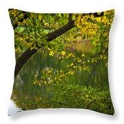 Autumn's Touch Throw Pillow