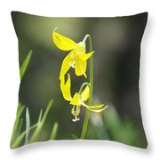 Avalanche Lily Throw Pillow