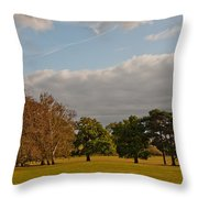 Avery Hill Park Throw Pillow