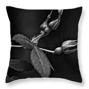 Awakening Monochrome Throw Pillow