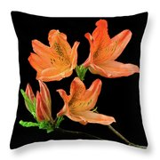 Azalea Throw Pillow