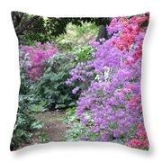 Azalea Trail Throw Pillow