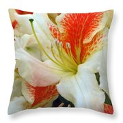 Azaleodendron Glory Of Littleworth Throw Pillow