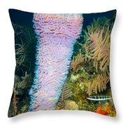 Azure Vase Throw Pillow