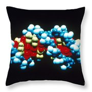 B-dna Molecular Model Throw Pillow by Science Source
