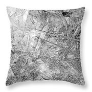 B-w 0501 Throw Pillow