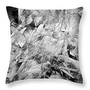 B-w 0505 Throw Pillow