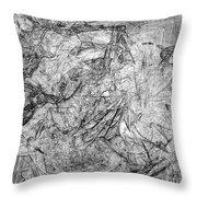 B-w 0506 Throw Pillow