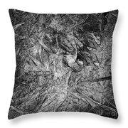 Abstraction 547 - Marucii Throw Pillow
