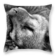 B W Slumber Throw Pillow