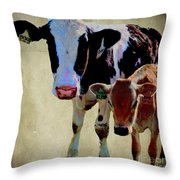 B1308 With B2148 Throw Pillow