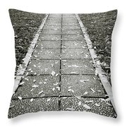 Ba Dinh Square In Hanoi Throw Pillow
