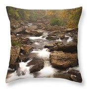 Babcock Creek Scene 1 Throw Pillow