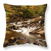 Babcock Creek Scene 4 Throw Pillow