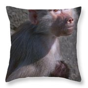 Baboon Carrying Her Baby Throw Pillow
