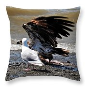 Baby Bald Eagle Movement Throw Pillow