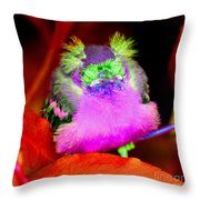 Baby Bird Of A Different Color Throw Pillow