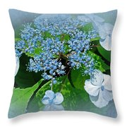 Baby Blue Lace Cap Hydrangea Throw Pillow