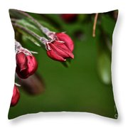 Baby Buds Throw Pillow