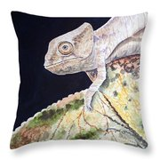 Baby Chameleon Throw Pillow