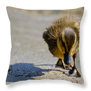 Baby Duck Throw Pillow